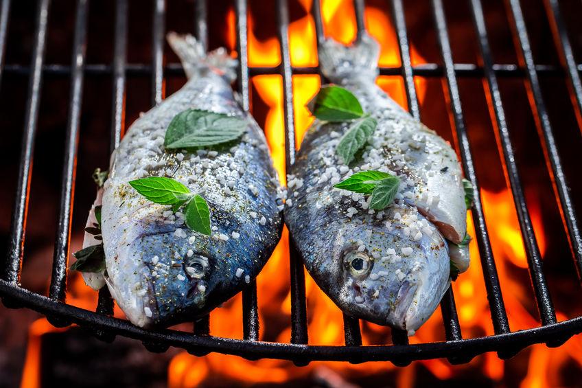 צליית דגים על האש